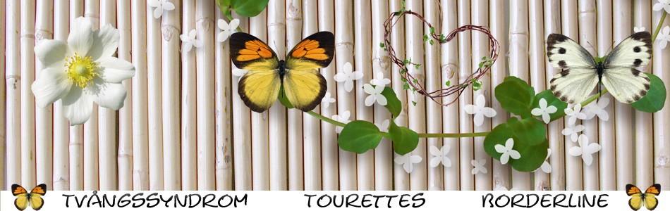Mamma Med Tvångssyndrom, Tourettes Syndrom, Ångest....